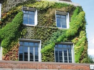 groene gevel met panelen