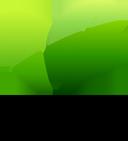 Groen en biodiversiteit